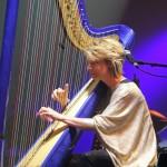 C FINCH harpe FIL 2014