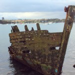 QUELMER barque