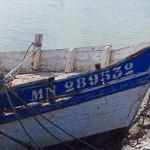 barque pecheur laTREMBLADE