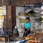 echoppe de riz