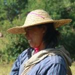 femme dans les rizieres KALAW