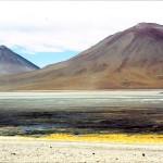 lagune verde BOLIVIE