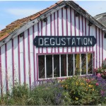 maison ostreicole degustation