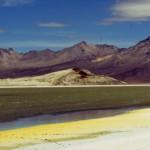 salar SURIRE sel+algues