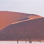 SOSSUSVLEI dunes#1