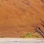 dunes SOSSUSVLEI #2