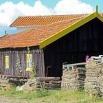 maison ostreicole La Tremblade
