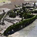 squelette de bateau
