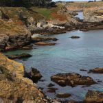lande-et-lichens-port-sheul