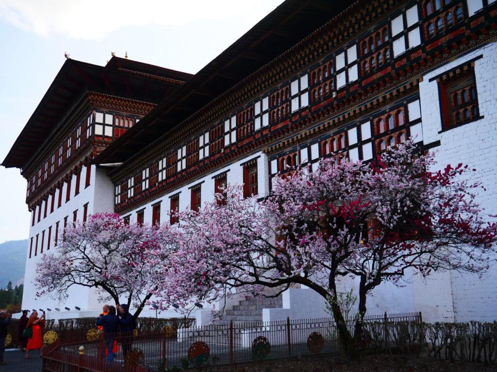 dzong PUNAKA