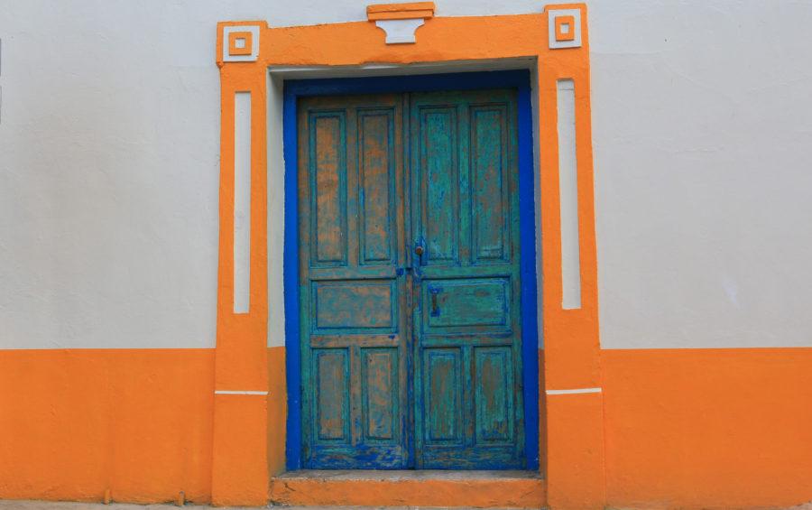 FLORES+porte bleue
